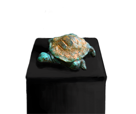 The Turtle Live Icon
