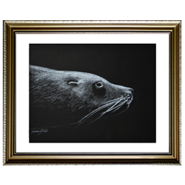 Arctic Seal Live Icon