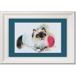 Himalayan Kitten Live Icon