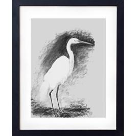 Stork Live Icon