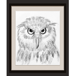 Hoot Owl Live Icon