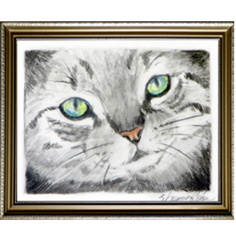 Tabby Cat Live Icon